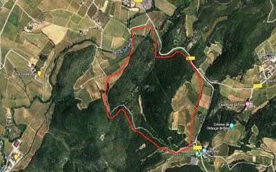 Aquest dissabte hi ha nova batuda per caçar porcs senglars als paratges de Costa Rovira i Cal Bertran