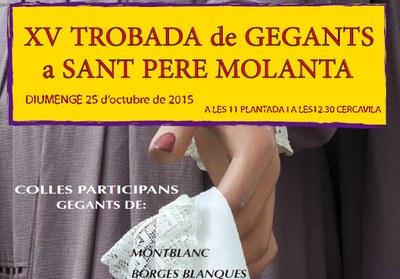 Aquest diumenge 6 colles donaran vida a la XV Trobada de Gegants a Sant Pere Molanta