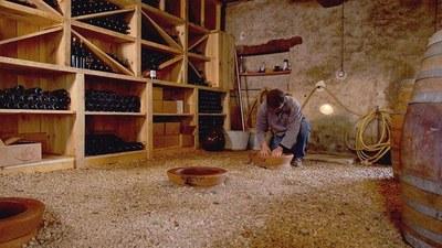 """Aquest diumenge es projecta a Moja el documental """"A la source du vin"""" dins del Most Festival"""