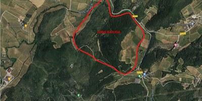 Aquest diumenge hi ha batuda per caçar porcs senglars al turó de Cal Bertran i Costarovira