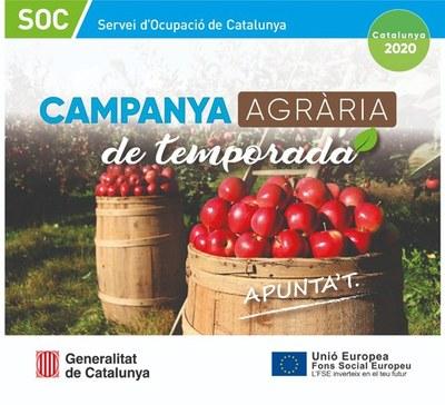Campanya Agrària 2020: Inscripció a les borses de treball i bústies de contacte per a les empreses