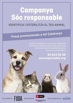 Campanya per esterilitzar i identificar animals de companyia a preus reduïts