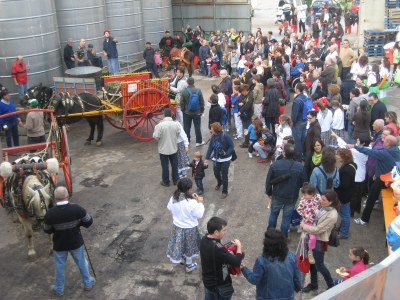 El Celler Cooperatiu tornarà a ser centre d'activitat de la Festa del Most
