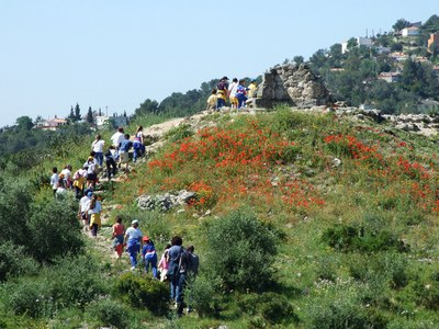 Doble proposta de visites guiades aquest cap de setmana al Castell d'Olèrdola