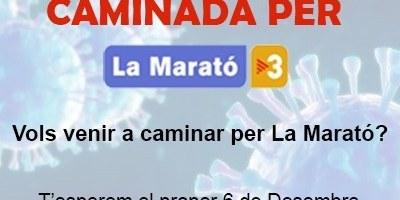 El Grup de Carnaval de Moja i l'AMPA de l'escola Circell organitzen per aquest diumenge una caminada a benefici de La Marató