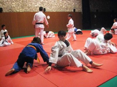 El Judo Olèrdola vol consolidar la xifra d'inscrits i repetir els èxits als campionats de Catalunya