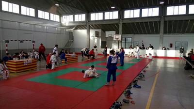 """El Judo Olèrdola ha organitzat al Pla del Penedès la primera jornada de la lliga """"Judocracks"""""""