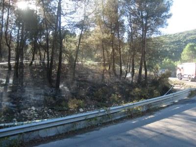 Els Bombers han donat per extingit aquest vespre l'incendi que ha afectat Olèrdola
