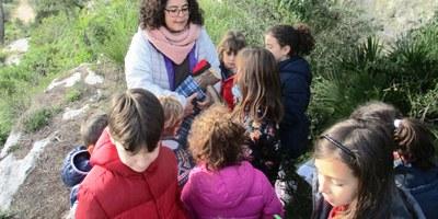 Es tanca amb èxit de públic l'activitat de buscar els tions al  parc d'Olèrdola