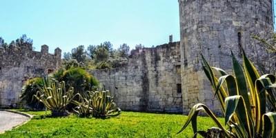 """Fins divendres resta oberta la inscripció per a fer de manera gratuïta la visita """"La petjada dels ibers a Olèrdola"""""""