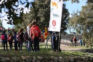 """Gairebé un miler d'infants participen al Conjunt d'Olèrdola en les Festes escolars de """" Viu el parc"""""""