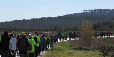 Gent gran d'Olèrdola, Cornellà, Artés i Vilanova del Camí han compartit caminada aquest dijous