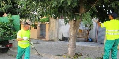Impuls sense precedents a la millora de les zones verdes d'Olèrdola