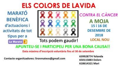 """Inscripcions obertes per a participar en el festival benèfic """"Els Colors de la Vida"""""""