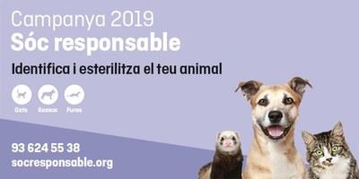 L'Ajuntament fa una crida a participar en la campanya d'esterilitzacions i d'identificació d'animals de companyia que organitza la Fundació FAADA