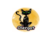 """L'entitat """"Olergat"""" inicia una campanya de sensibilització sobre com actuar en cas de trobar-se un animal al carrer"""