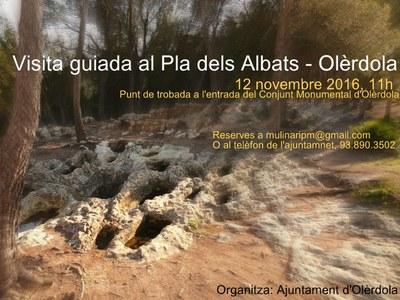 L'Ajuntament organitza una visita guiada gratuïta al Pla dels Albats el dissabte 12 de novembre