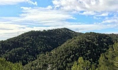 Obertes fins dijous les inscripcions per participar en la sortida al Puig de l'Àliga de dissabte