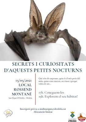 Un taller permetrà aquest dissabte conèixer els secrets dels ratpenats i detectar-ne les seves emissions ultrasòniques