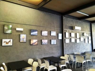 Una vintena de fotografies de socis de l'AFM s'exposen al bar del Local Nou de Moja