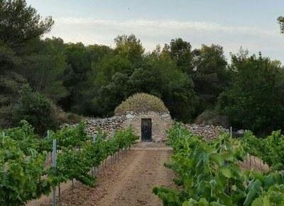 Visita guiada gratuïta aquest dissabte per barraques de pedra seca d'Olèrdola
