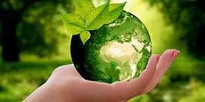 Campanyes ambientals