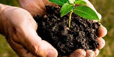 Servei de cessió de compostador domèstic