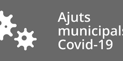 Bases reguladores i convocatòria de prestacions econòmiques de caràcter social per atendre a persones en situació d'especial vulnerabilitat socioeconòmica derivada del COVID19