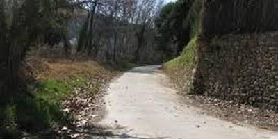 El catàleg de camins d'Olèrdola