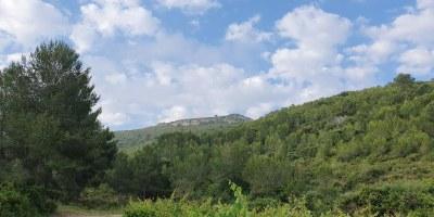 Ruta  Sant Pere Molanta - Can Trabal - Viladellops - St. Miquel d'Olèrdola