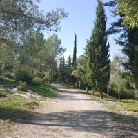 Camí del Pla dels Albats